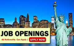 New York Job Opportunities