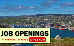 Newfoundland Job Opportunities
