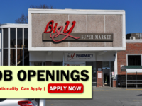 Big Y Job Opportunities
