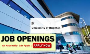 University of Brighton Job Opportunities